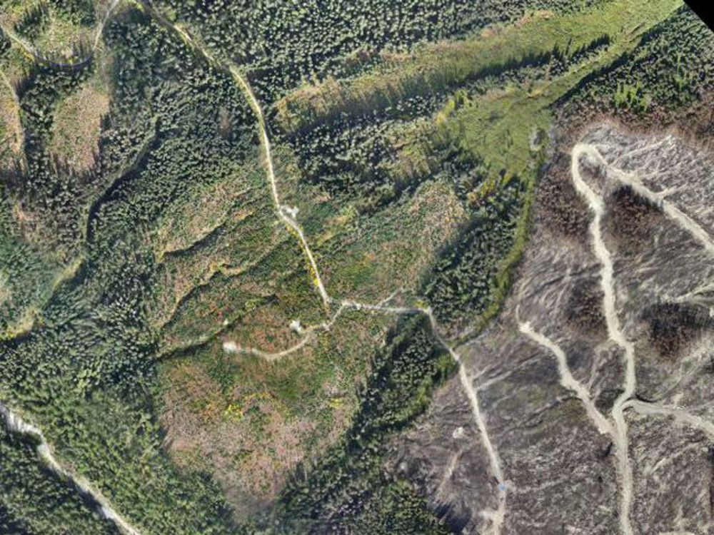 http://argusaerialmapping.ca/wp/Forestry